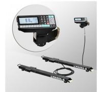 Стержневые весы с печатью этикеток 4D-B-23-1000-RP